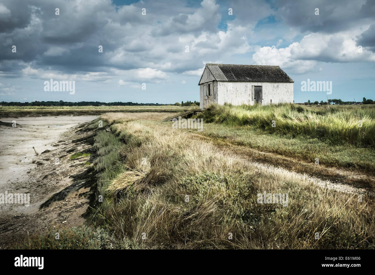 An old shed on Wallasea Island in Essex - Stock Image