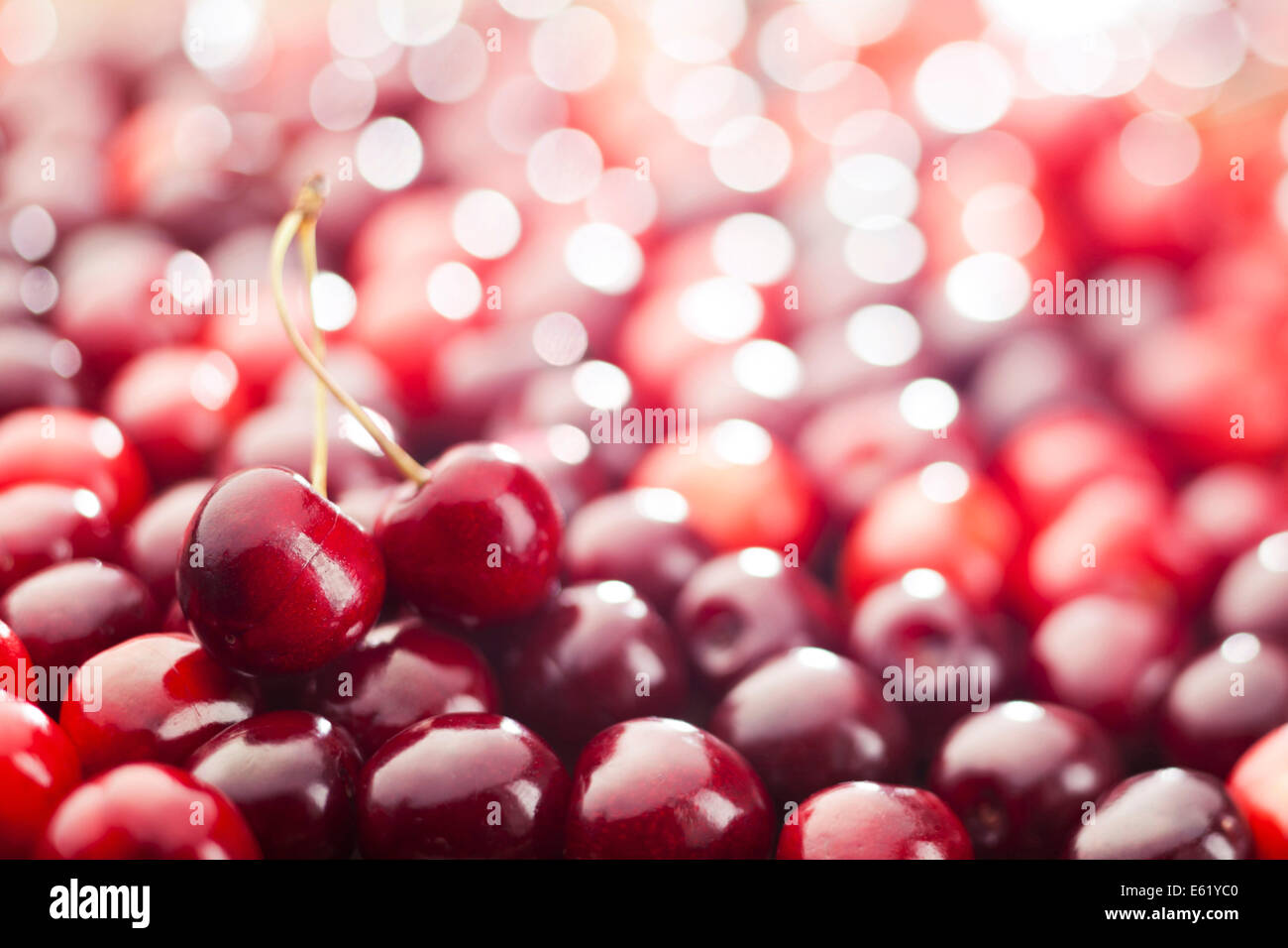 Red cherries background. Shallow depth of field. - Stock Image