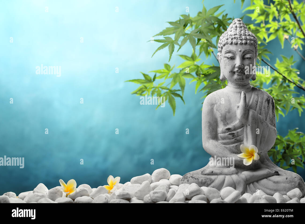 Buddha in meditation with zen stones and flower. - Stock Image
