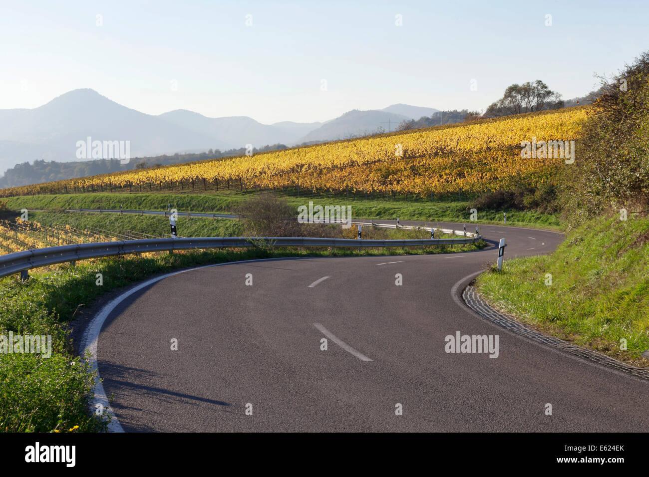 German Wine Route, Rhineland-Palatinate, Germany Stock Photo