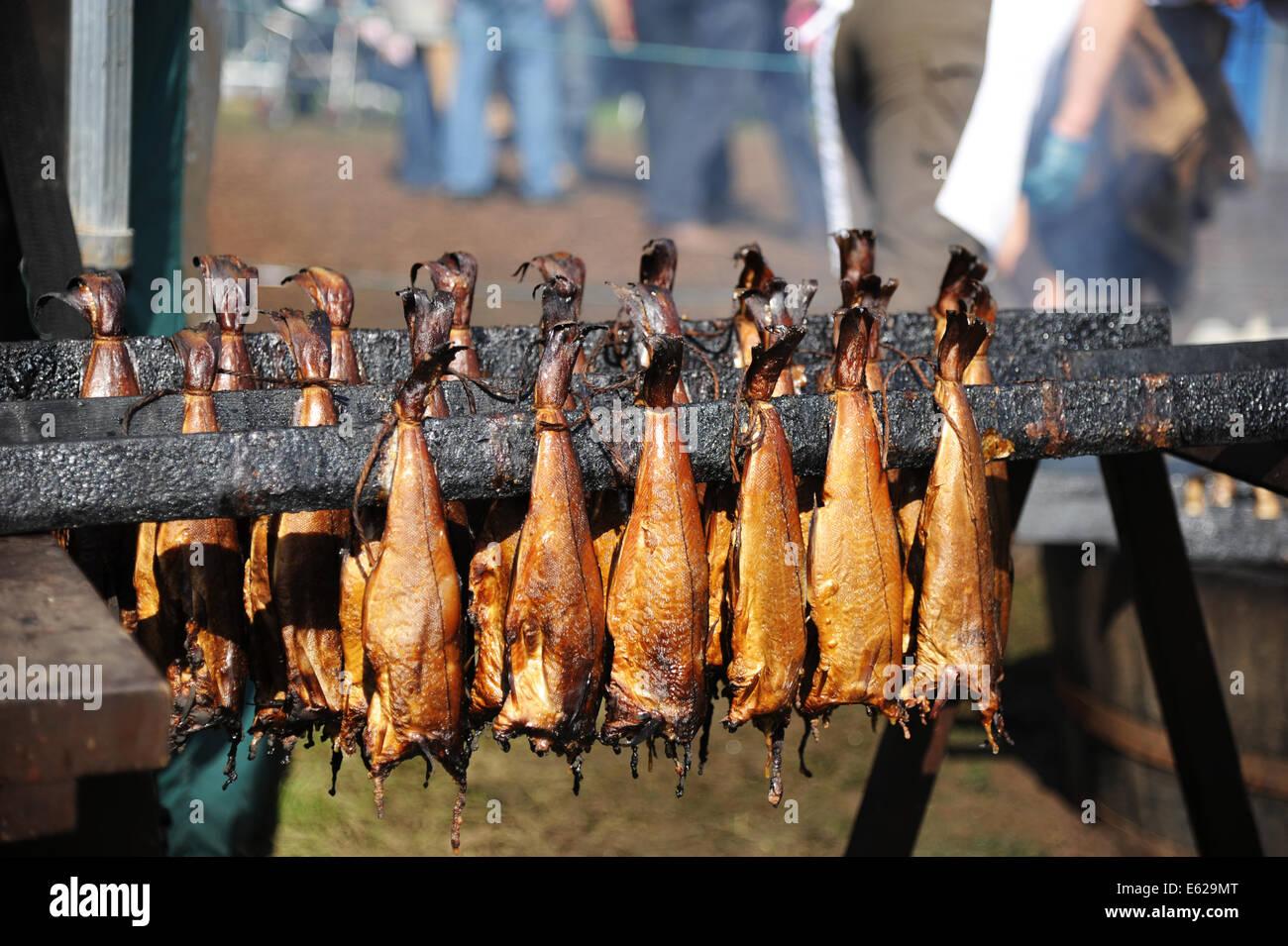 Arbroath smokies after being smoked. - Stock Image