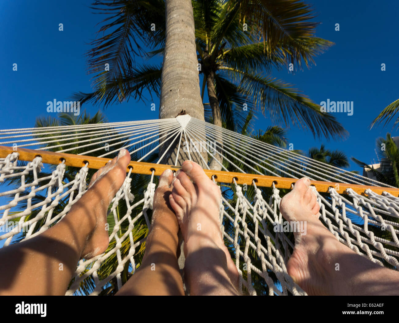 feet of couple in hammock under palm tree - Stock Image