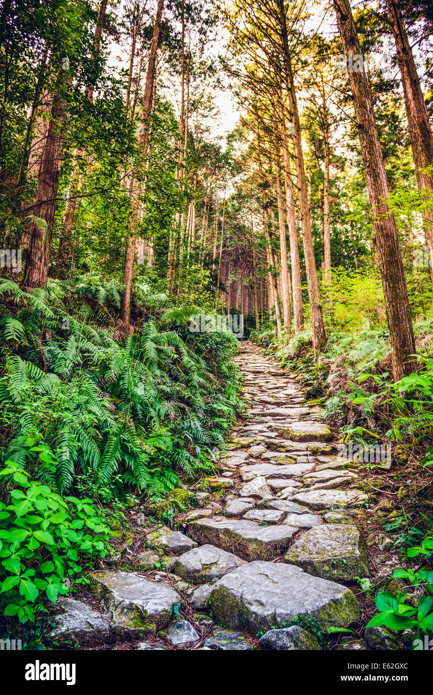 Kumano, Japan at Matsumoto Pass. The pass is part of the Kumano Kodo, a series of ancient pilgrimage routes. - Stock Image