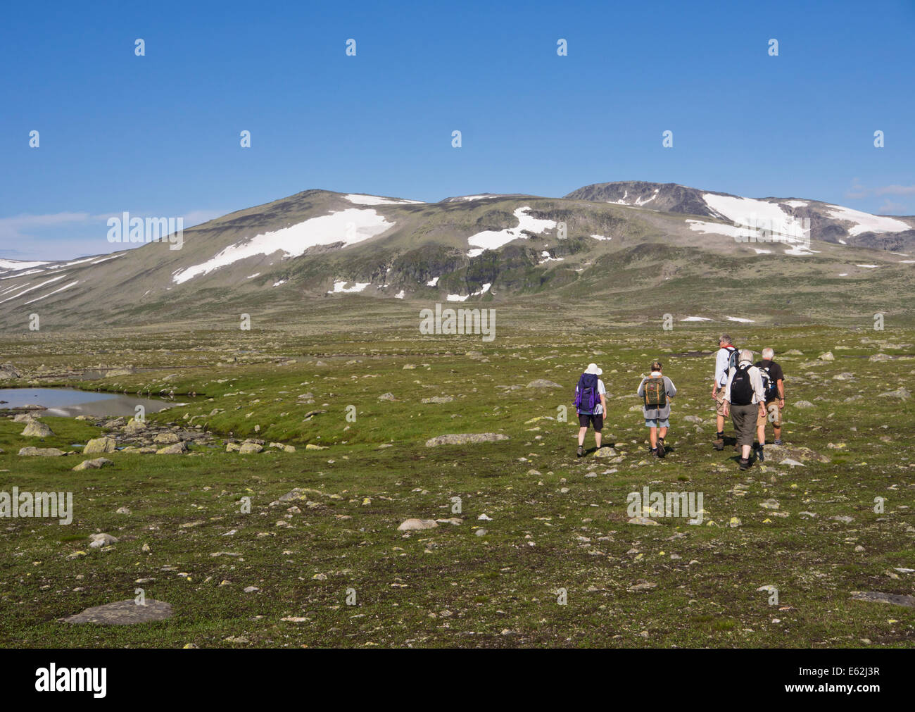 Hikers on a footpath across Valdresflya in Jotunheimen Norway, barren but inviting in the summer sun, heading for - Stock Image