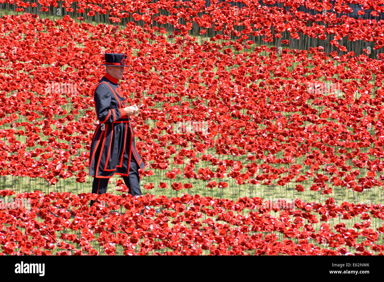 Yeoman Warder & field of Ceramic Poppies 'Blood swept lands & seas of red' World War 1 tribute in - Stock Image