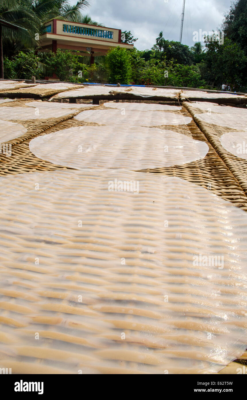 Rice paper drying in the sun, Mekong Delta, Vietnam - Stock Image