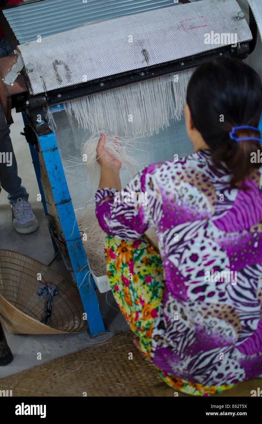 Woman making rice noodles  Mekong Delta, Vietnam - Stock Image