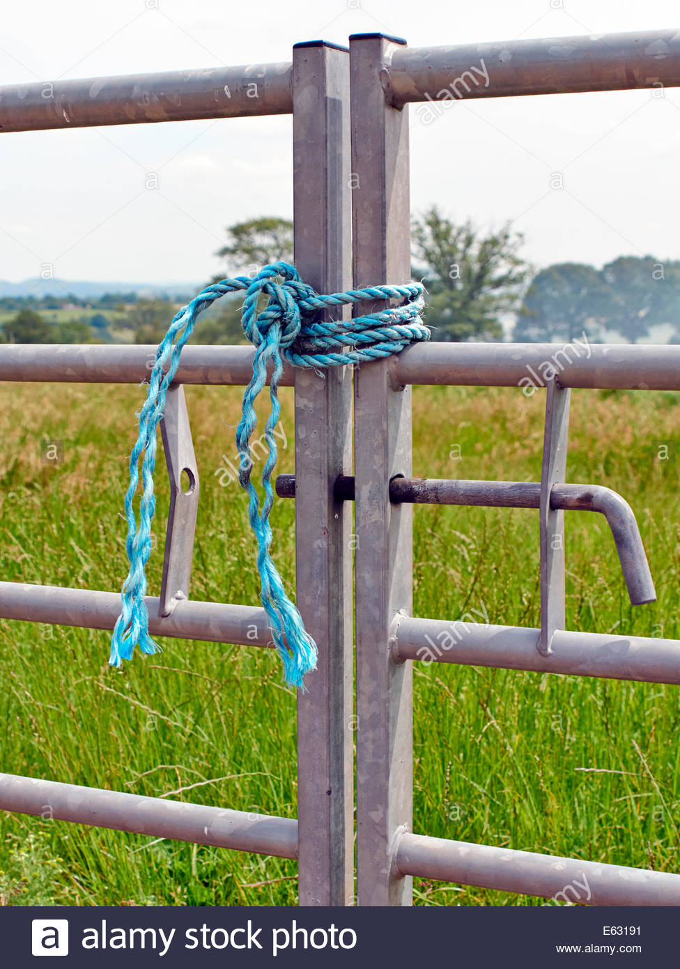 two closed metal galvanised farm gates tied up with blue nylon rope on farmland Stock Photo