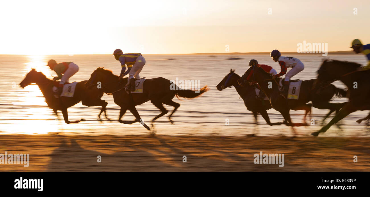 Horse race at the beach of Sanlúcar de Barrameda at the Guadalquivir river mouth, Cádiz province, Andalusia, - Stock Image