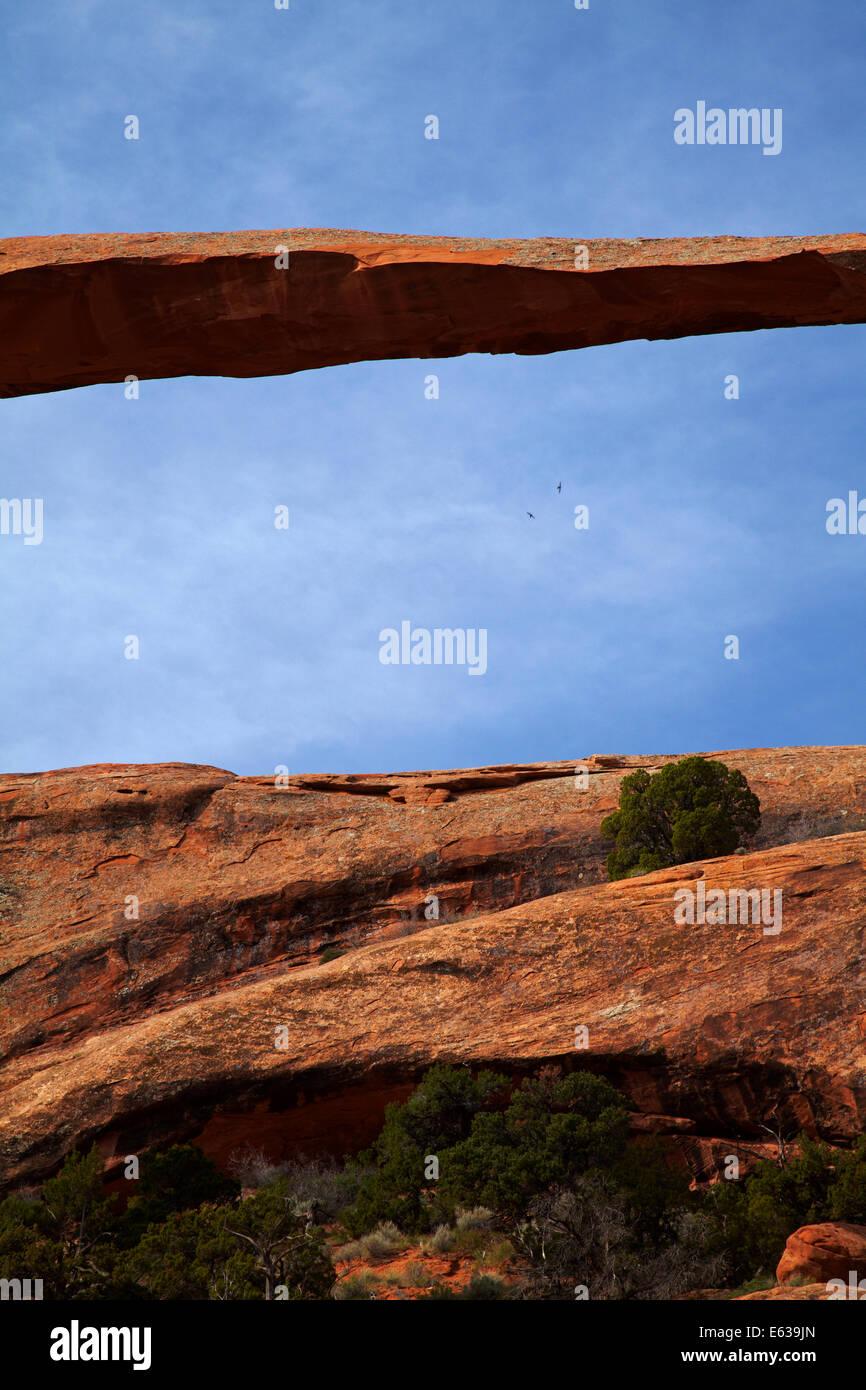 Landscape Arch (world's longest natural rock arch), Devil's Garden area of Arches National Park, near Moab, - Stock Image