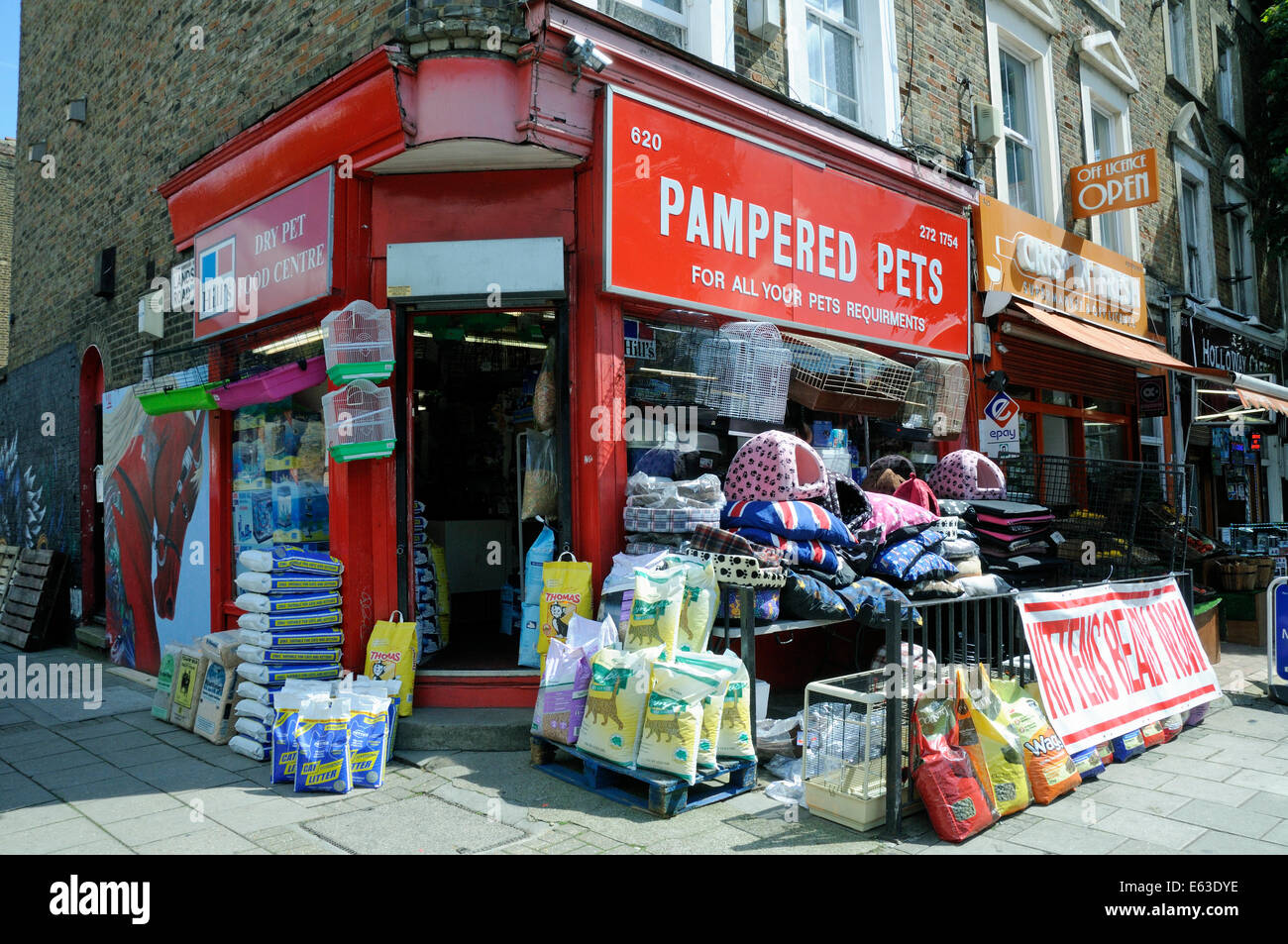 Pampered Pets pet shop, Holloway Road, London Borough of Islington England Britain UK - Stock Image