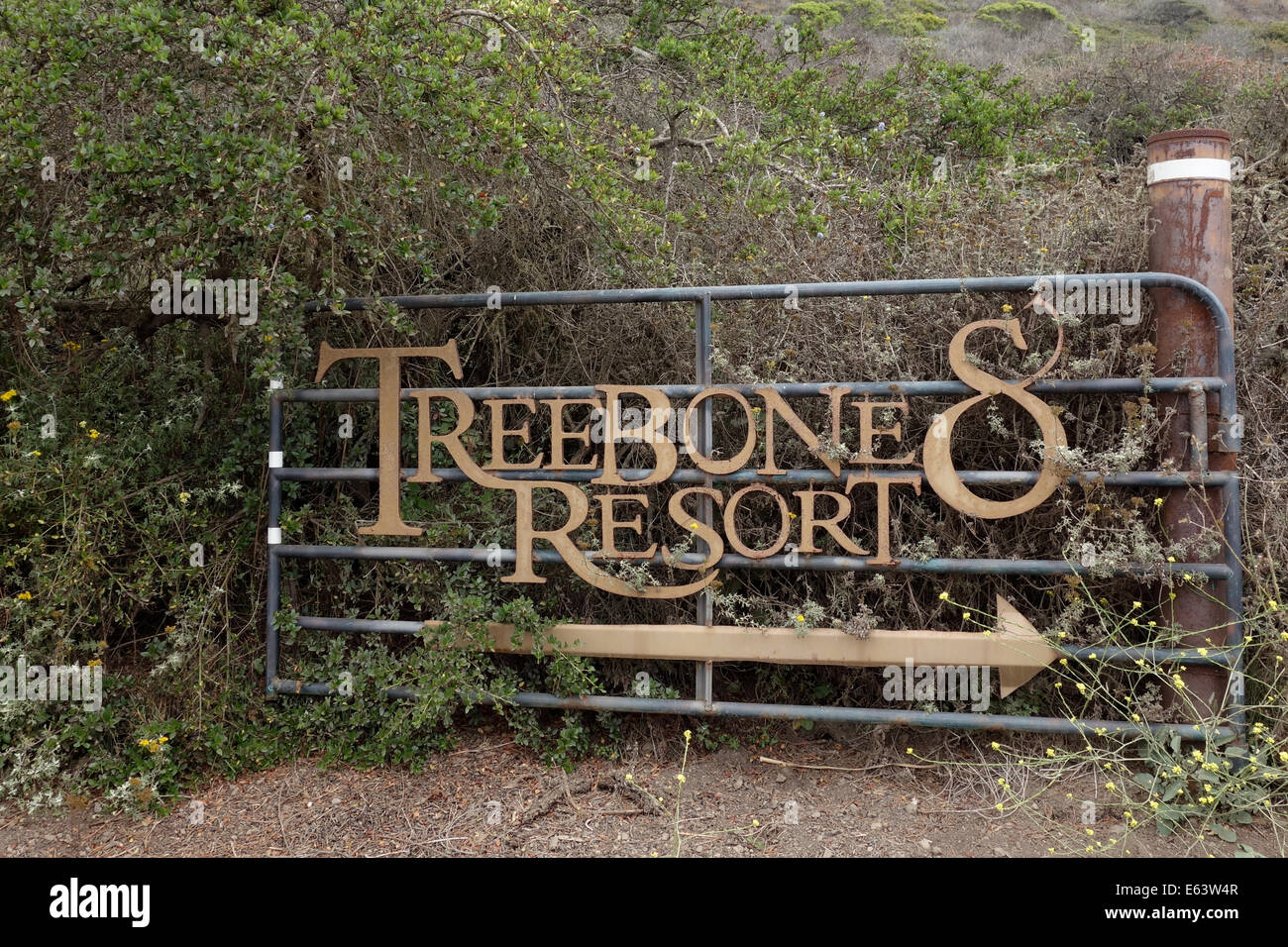 Treebones Resort is a 'glamping' campground in Big Sur