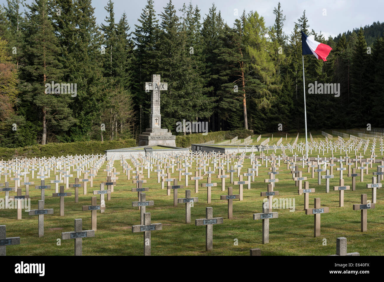 Stone crosses, French military cemetery, First World War, Col du Wettstein, Vosges, Orbey, Alsace, France - Stock Image