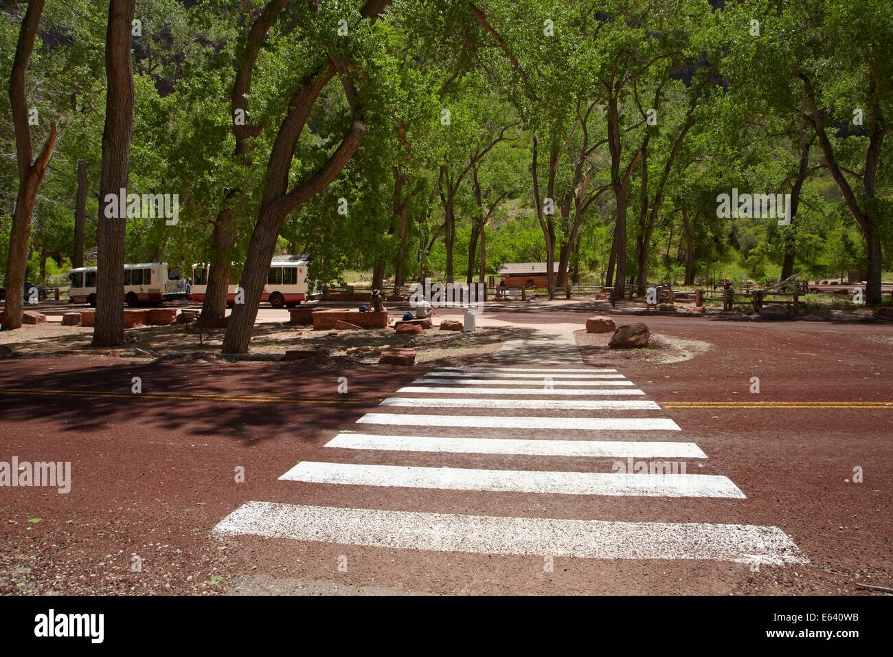 Pedestrian crossing to shuttle stop at Grotto picnic area, Zion Canyon Scenic Drive, Zion National Park, Utah, USA - Stock Image