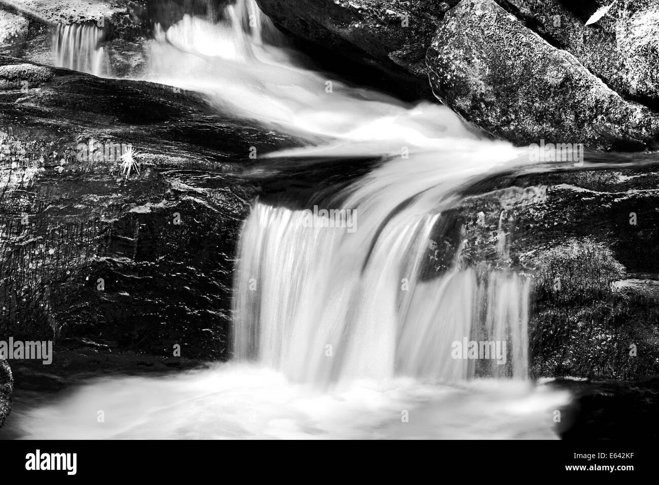 """Germany, Bavaria: Cascade running in the flume """"Steinklamm"""" inside of National Park Bayrischer Wald in black and Stock Photo"""