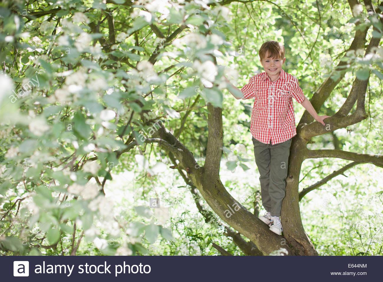 Boy climbing tree outdoors - Stock Image