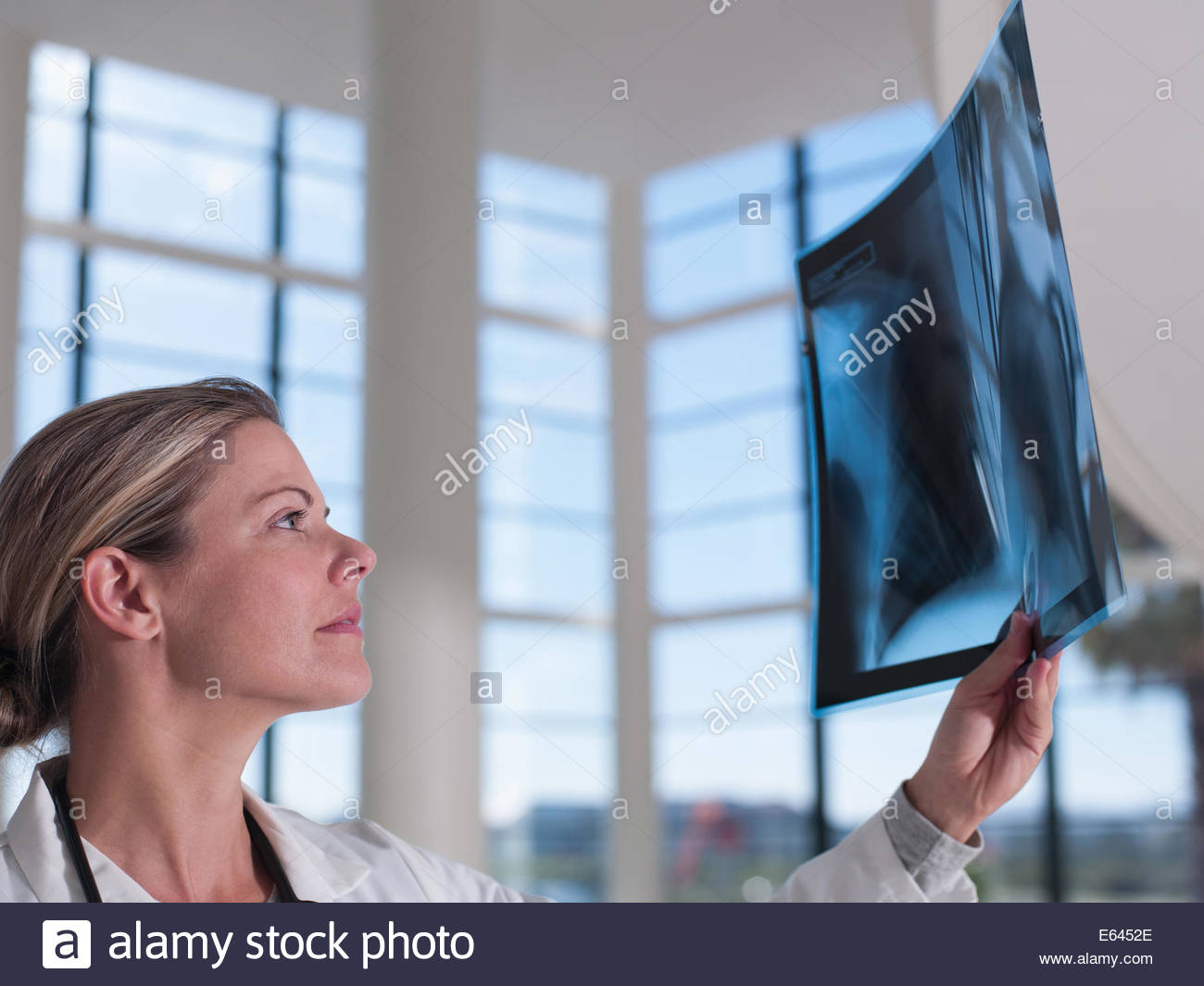 Doctor reviewing x-ray - Stock Image
