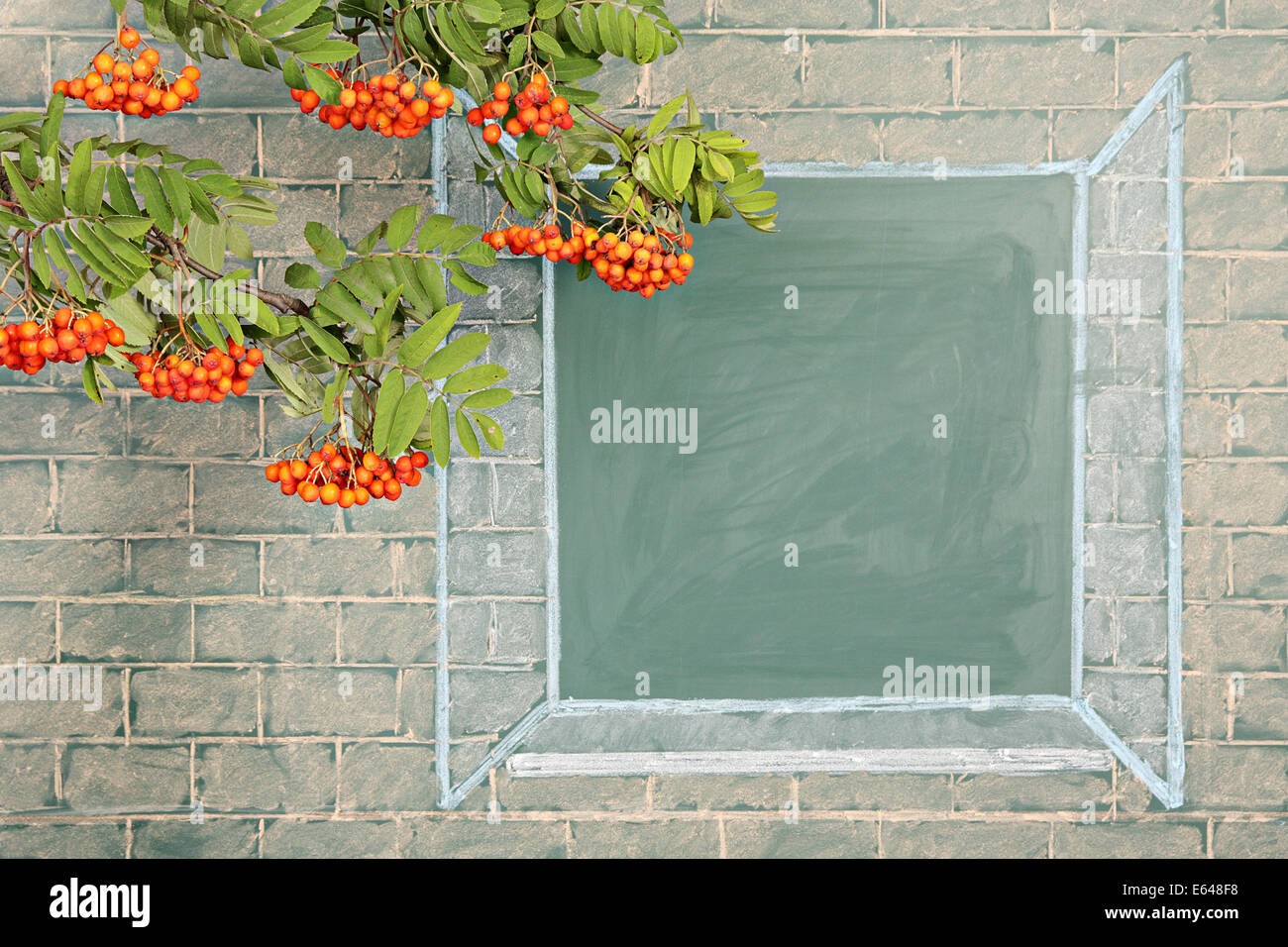 Branches of rowan tree before illustration on a chalkboard of the open window Stock Photo
