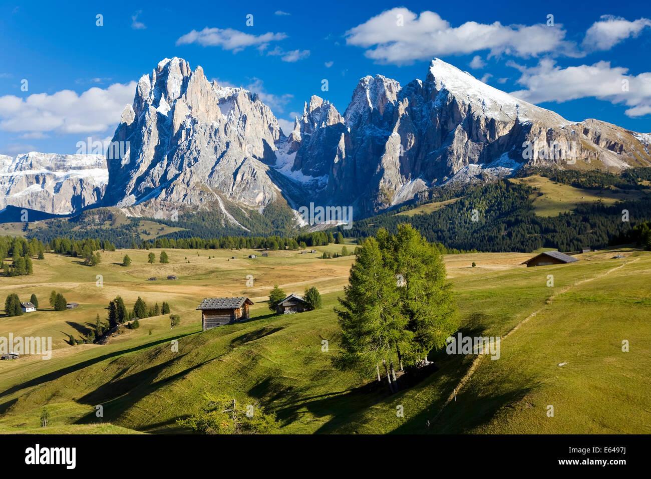Italy, Italia Trentino-Alto Adige, South Tyrol Bolzano district Alpe di Siusi, Seiser Alm - Stock Image