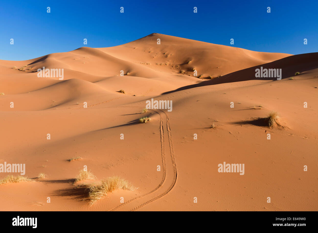 Dunes, Erg Chebbi, Sahara Desert, Morocco - Stock Image