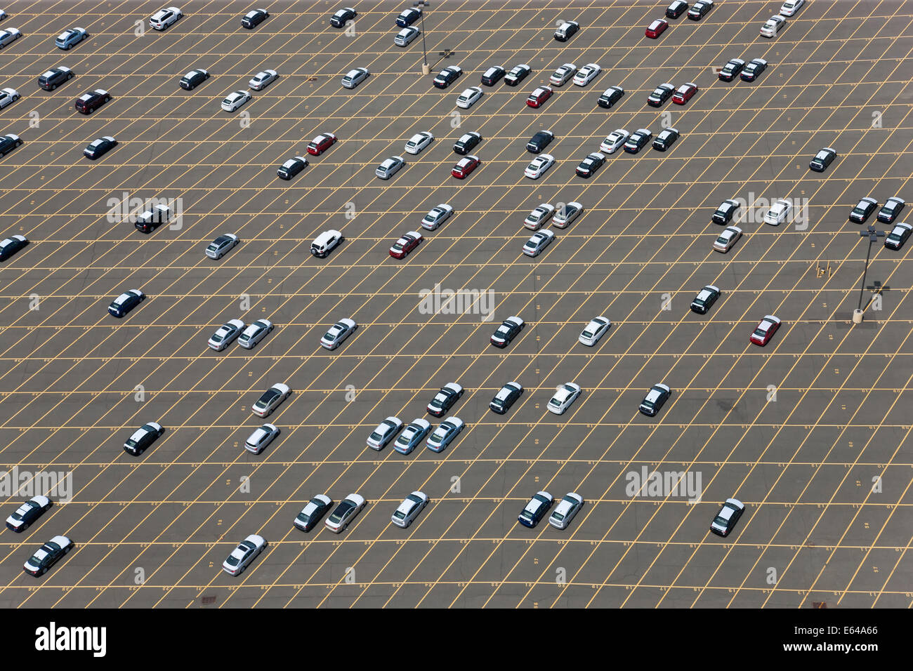 New cars waiting for delivery at port, New Jersey, New York, USA - Stock Image