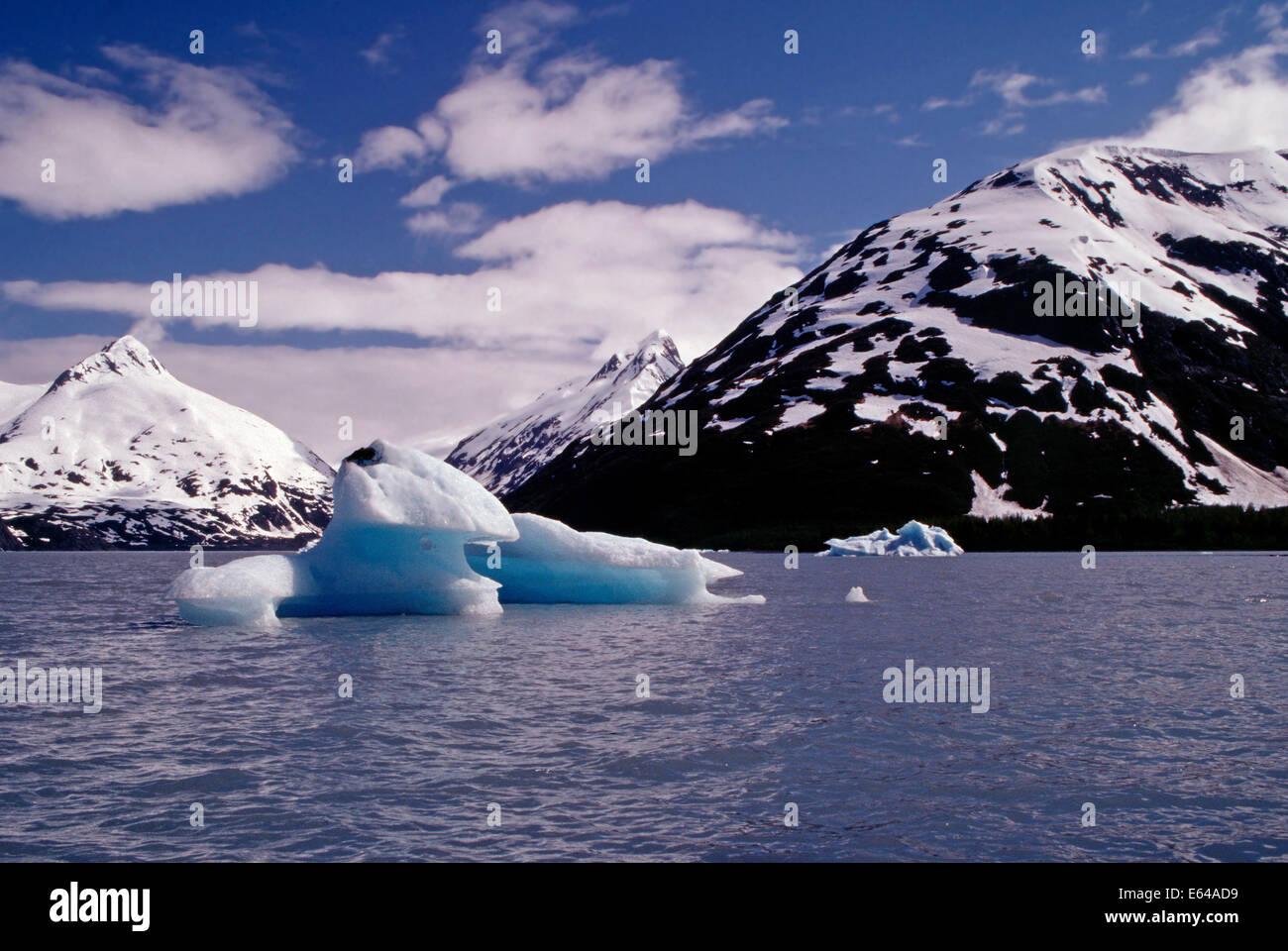 An ioceberg floats loose from the Portage Glacier,Alaska - Stock Image