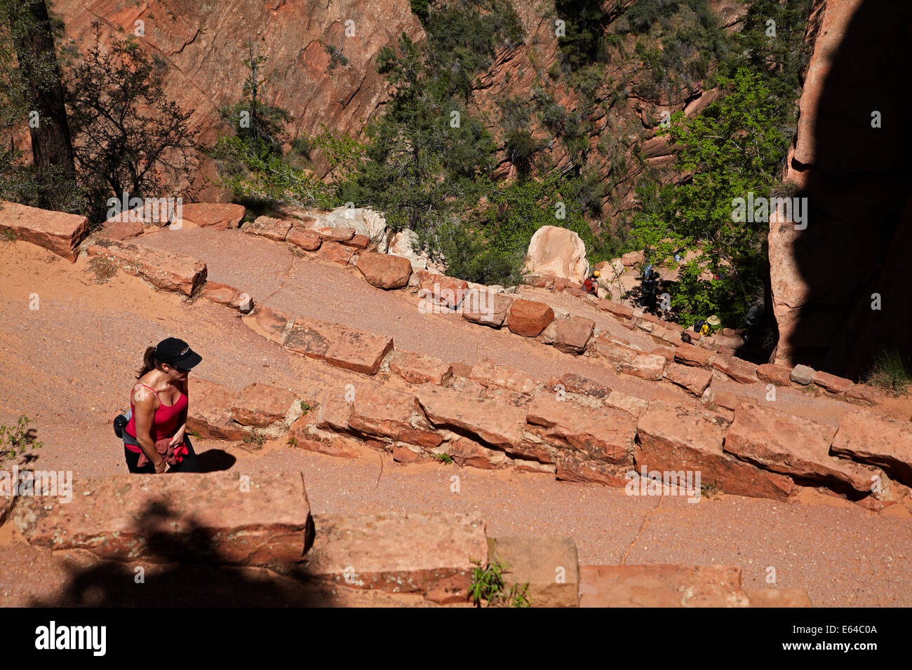 Hikers on Walter's Wiggles zigzag, on West Rim Trail and  Angels Landing track, Zion National Park, Utah, USA Stock Photo