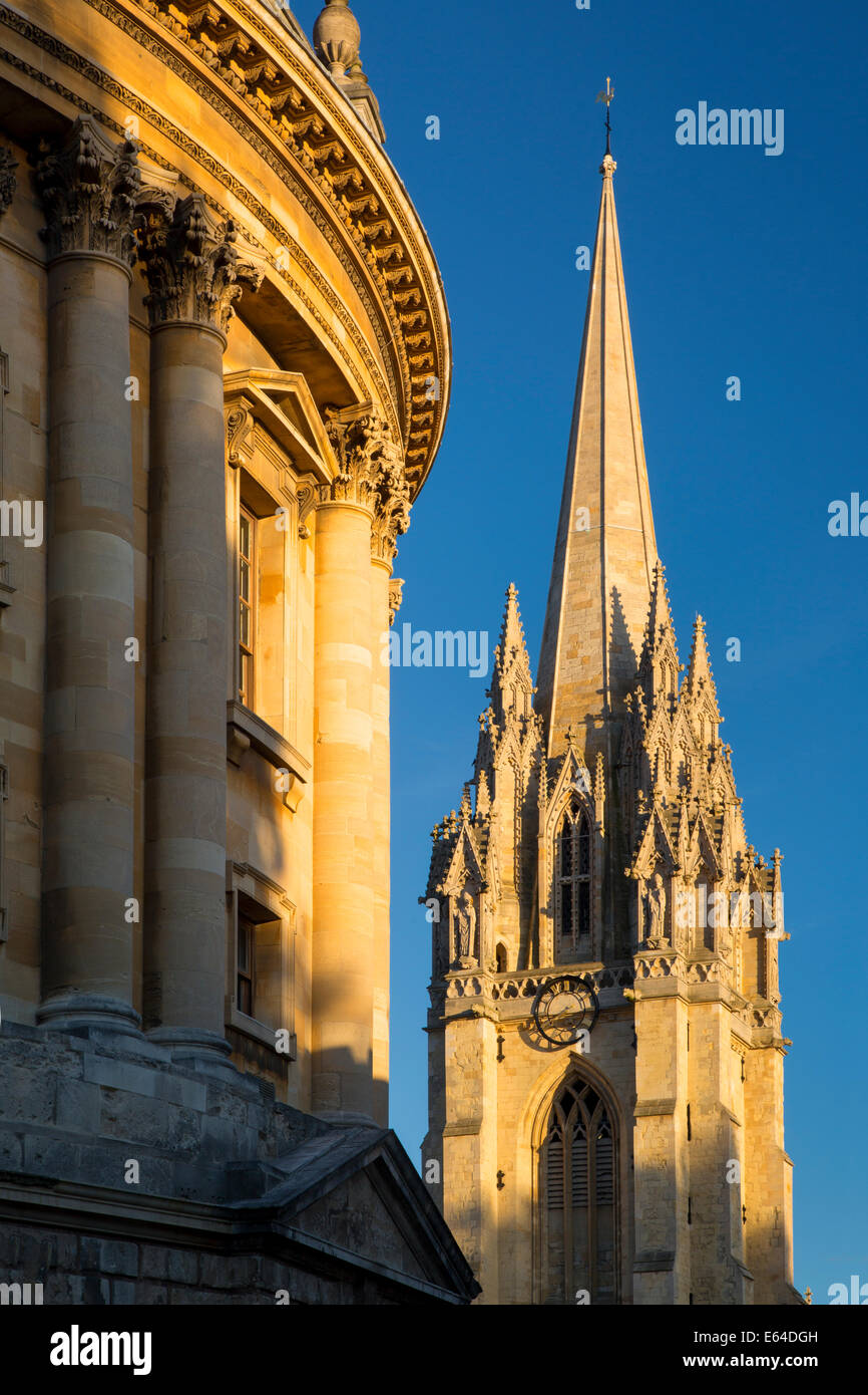 Evening sunlight on Radcliffe Camera and the tower of St Mary's Church, Oxford, Oxfordshire, England - Stock Image