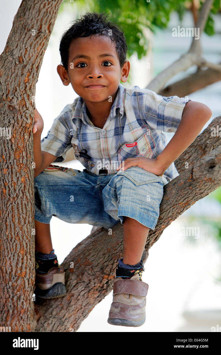 Young boy (5 years) sits in a tree. Dili, Timor Leste, East Timor Stock Photo