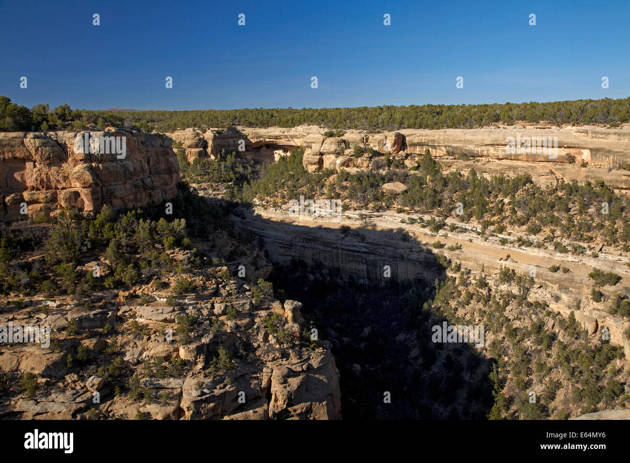 Cliff Canyon and Cliff Palace (over 700 years old) in distance, Mesa Verde National Park (UNESCO World Heritage - Stock Image