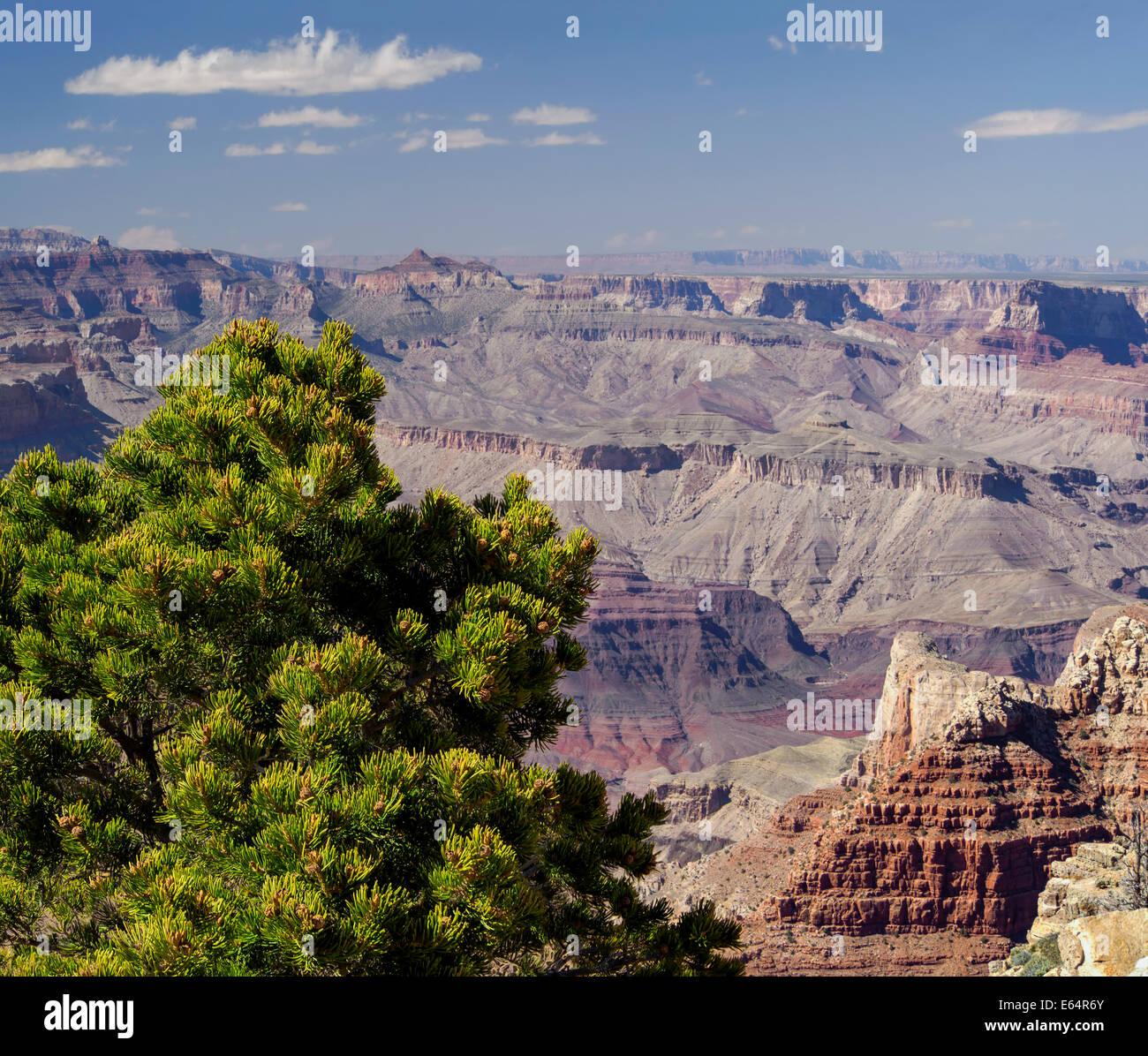 Grand Canyon south rim view from Pipe Creek Vista, Arizona USA, 2014 scenic landscape photography Stock Photo