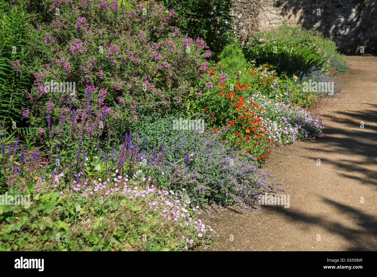 Summer herbaceous border, New College Gardens, Oxford, England, UK - Stock Image