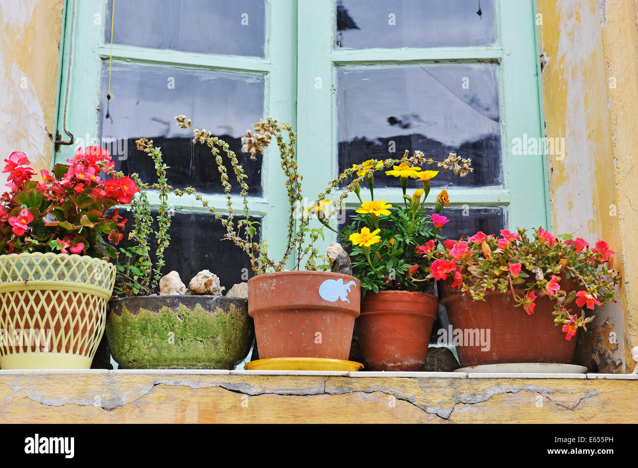 Flowers in plant pots on a windowsill in a French village, France, Europe - Stock Image