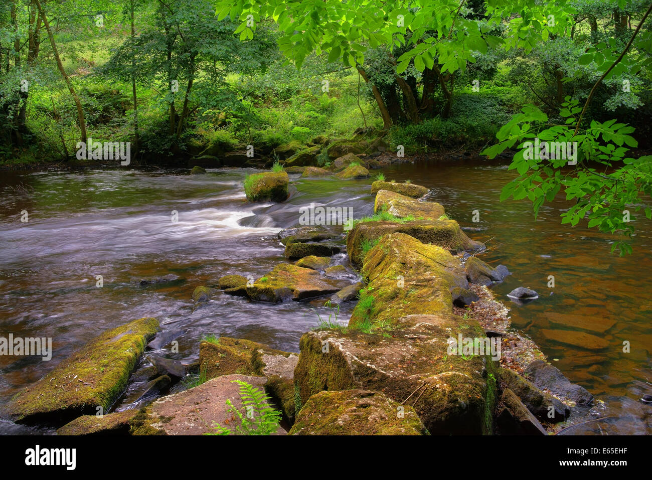 UK,Derbyshire,Peak District,River Derwent and Stepping Stones near Hathersage - Stock Image