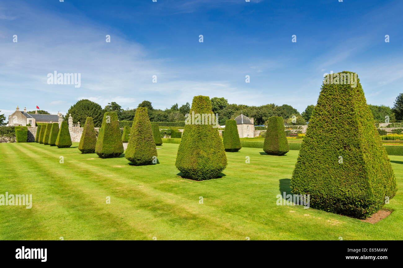PITMEDDEN GARDENS ABERDEENSHIRE SCOTLAND WITH A TWIN OGEE ROOFED PAVILION AND THE TOPIARY AVENUE OF CLIPPED YEW - Stock Image