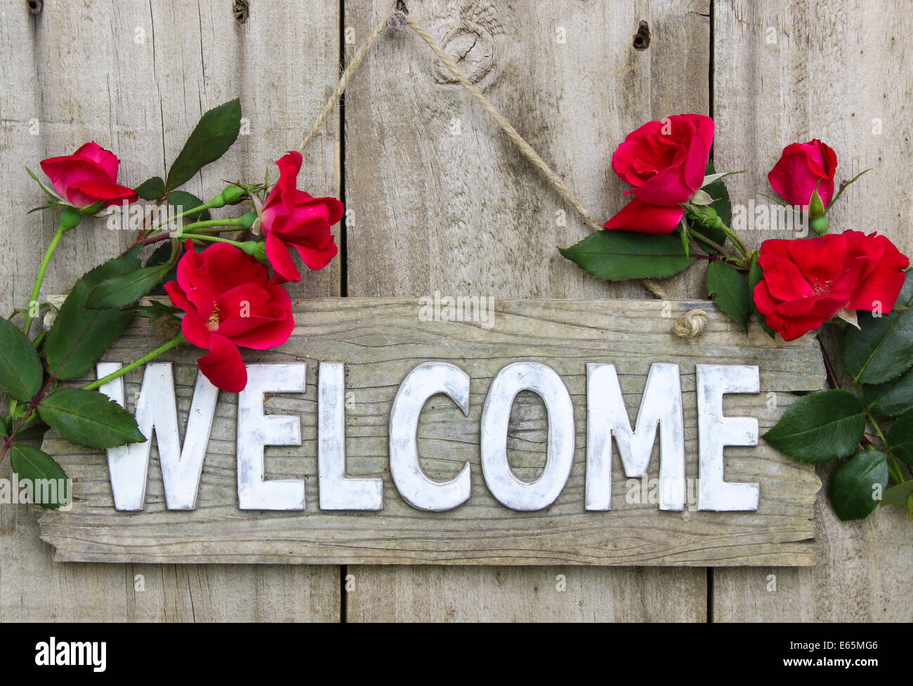 Weathered wood welcome sign hanging on wooden door with flower border of red roses - Stock Image
