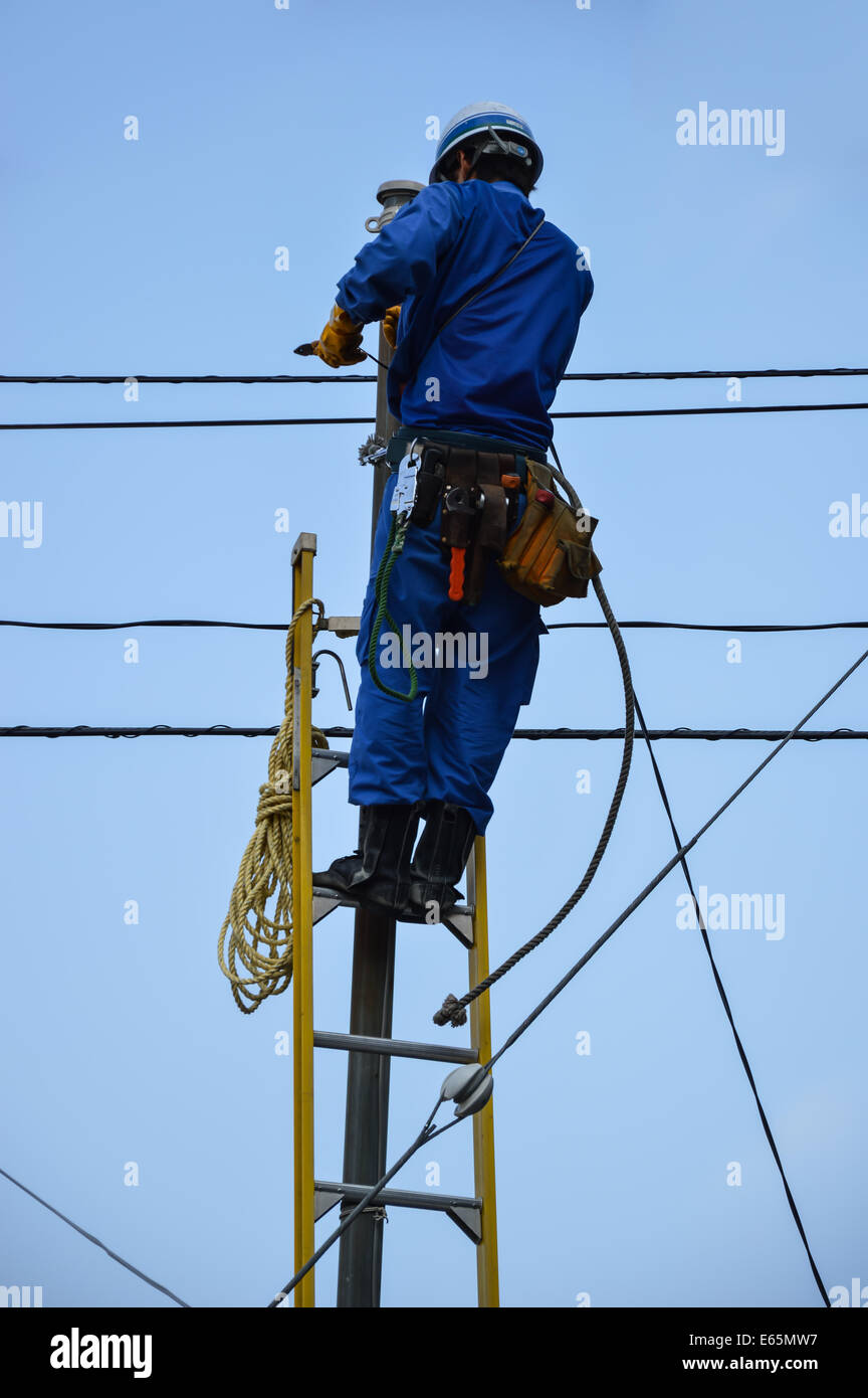 Electrician  climbs a ladder in order to repairs some lines - Stock Image