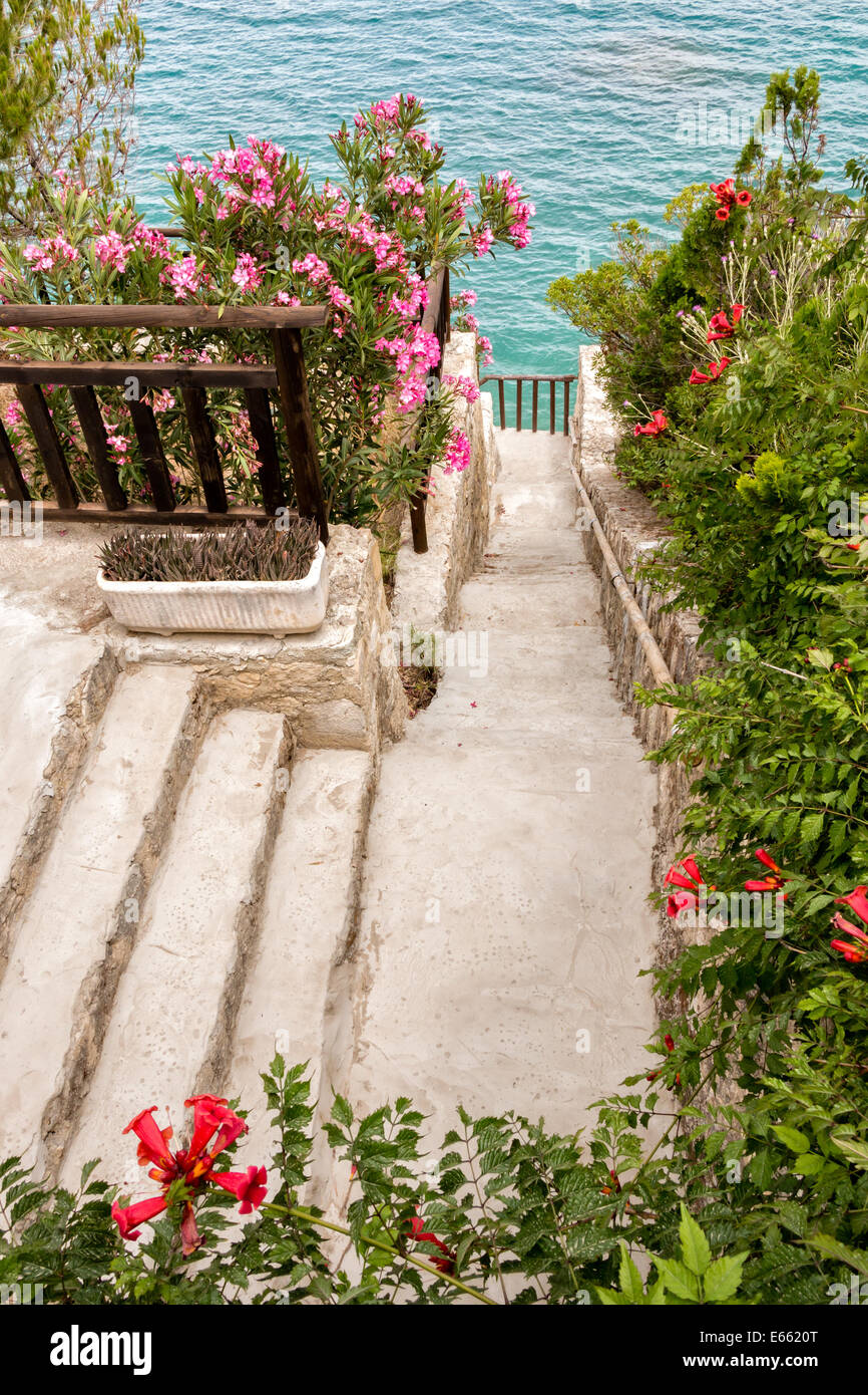 Walking path through a flourishing garden of red flowers at a sunny seaside in Greece - Stock Image