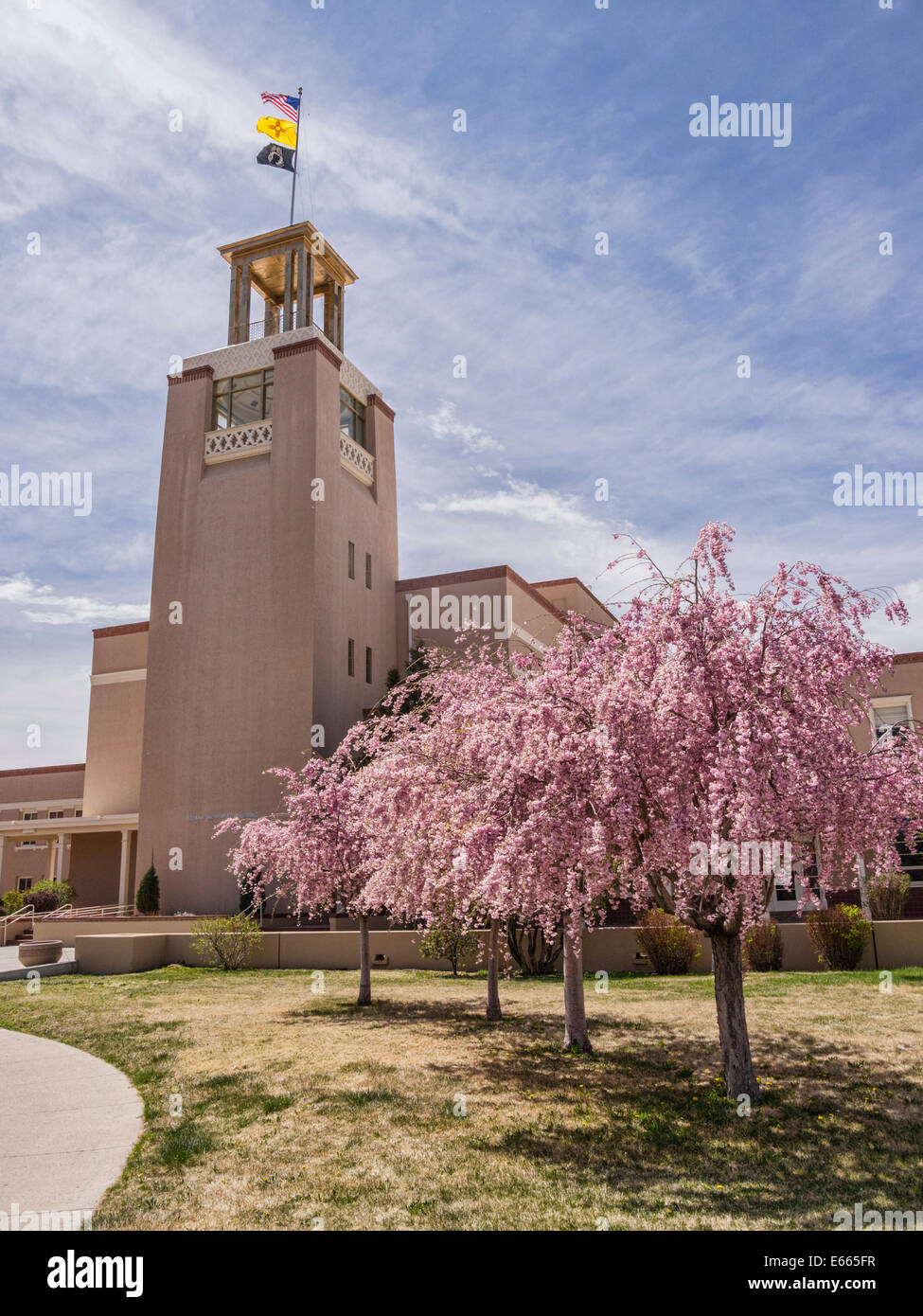 Cherry trees in blossom and the tower of the Bataan Memorial Building, a New Mexico State office complex in Santa - Stock Image