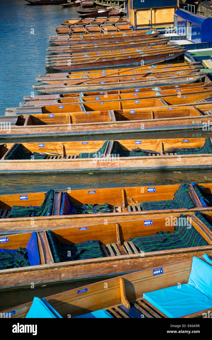 Punts on the Cam river, Cambridge, England, UK - Stock Image