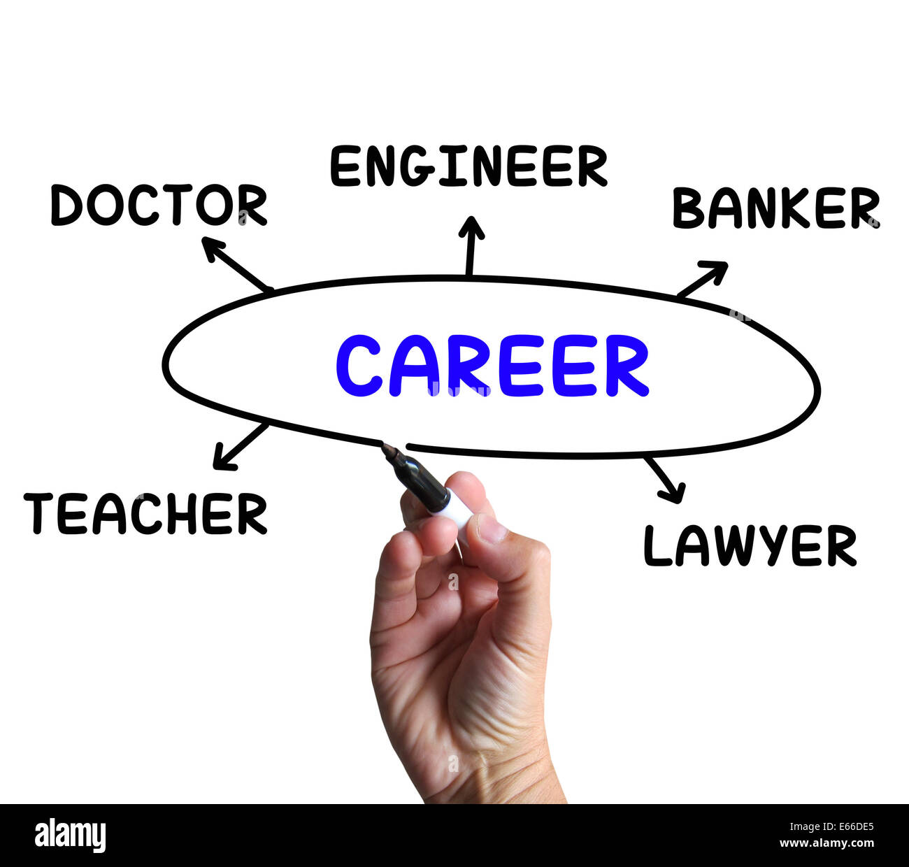 Career diagram meaning profession and field of work stock photo career diagram meaning profession and field of work ccuart Images