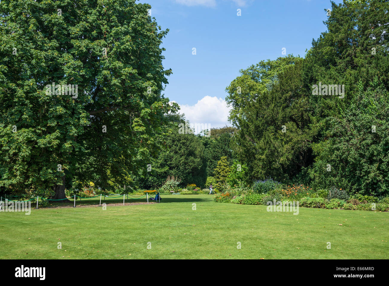 Christ's College, Fellows' Garden, Cambridge, England, UK - Stock Image