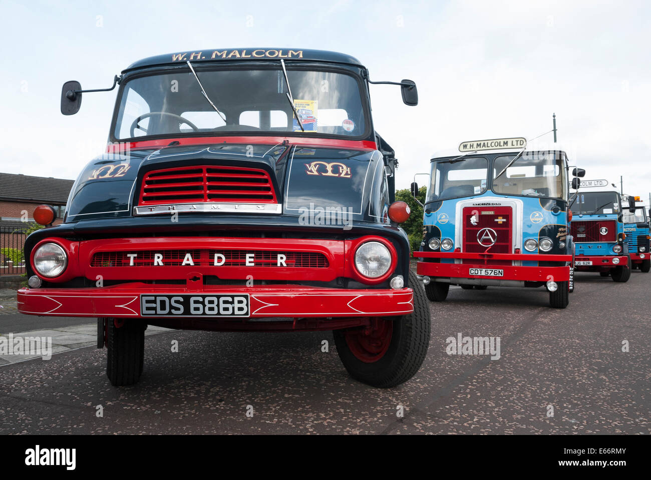 Line of Vintage Malcolm Group trucks lead by a Thames Trader and ...