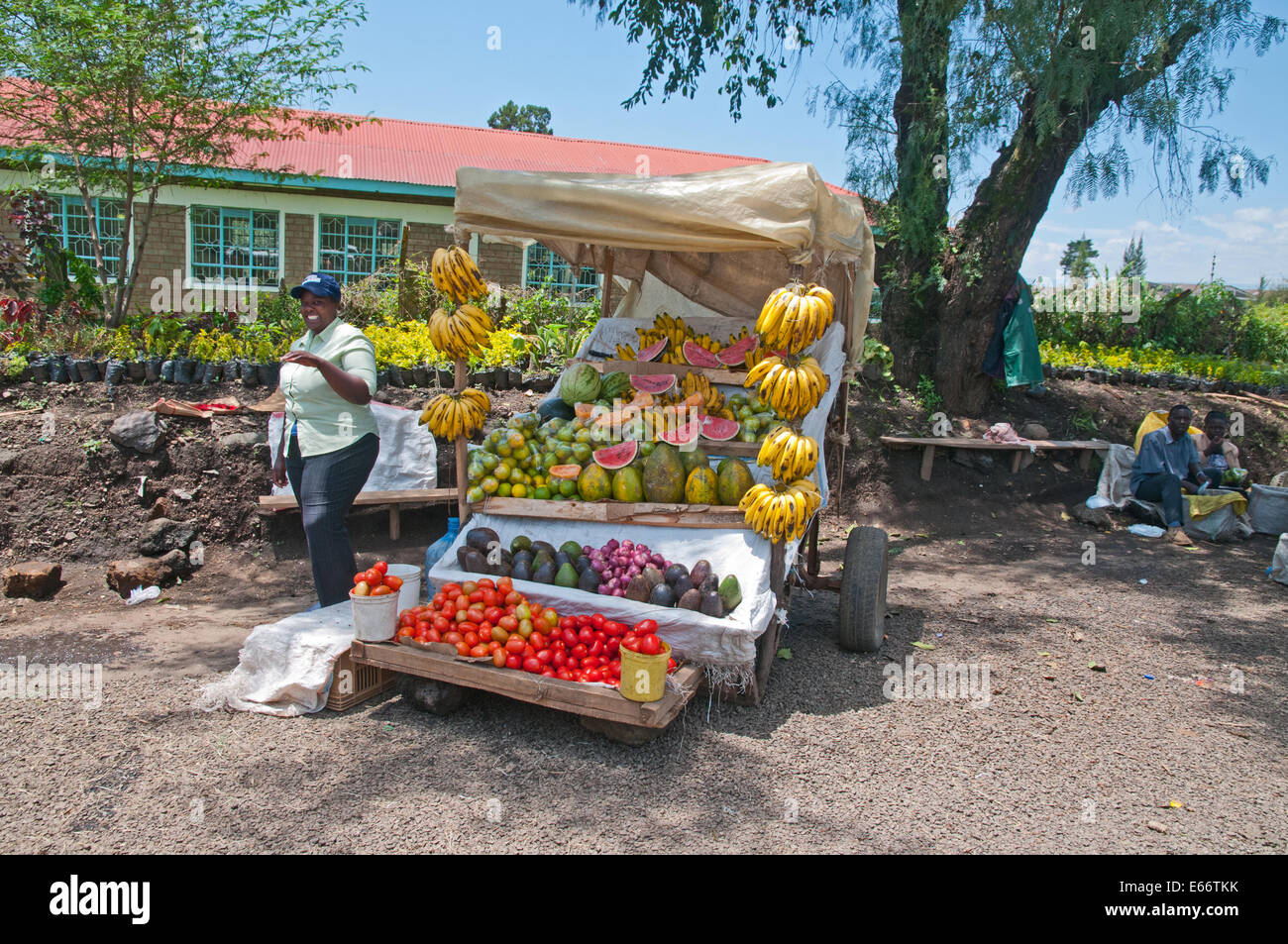 Woman at side of her market stall selling fruit bananas melons papaya avocados tomatoes on outskirts of Nakuru town - Stock Image