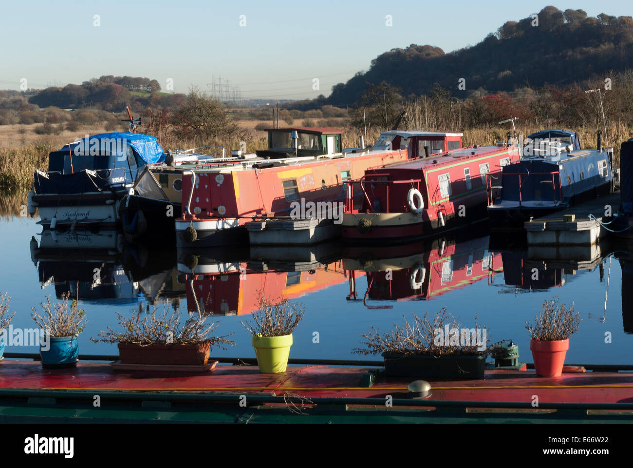 Canal Boats moored at Auchinstarry Marina on the Forth & Clyde Canal. - Stock Image