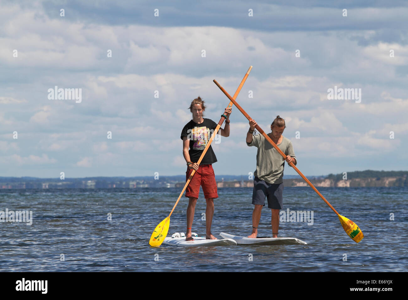 Two young men stand up paddling in Oresund, the Sound, at Rungsted, north of Copenhagen. Background the Swedish - Stock Image