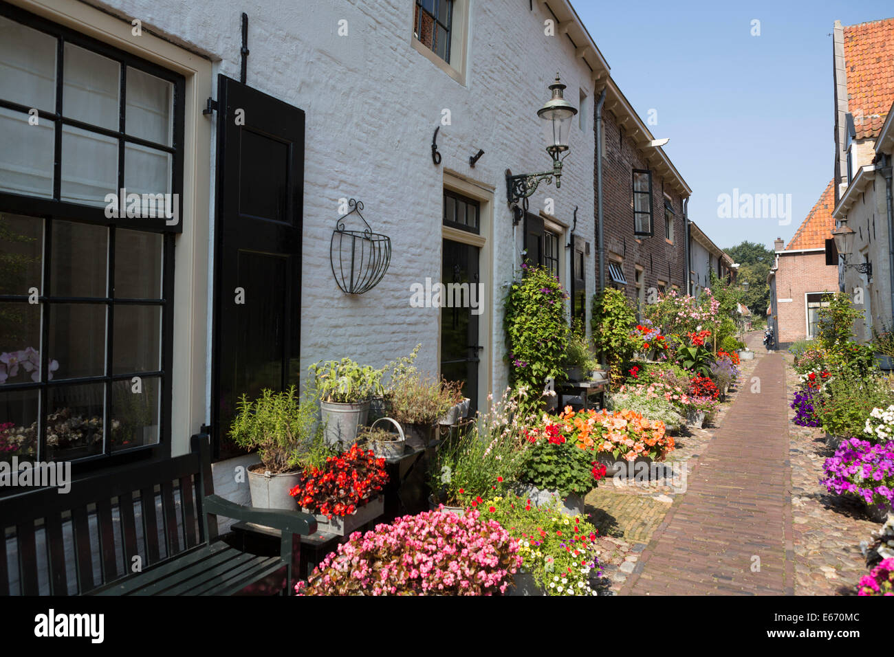 Romantic nostalgic street with colorful flowers in the old Hanseatic city 'Elburg' in the Netherlands - Stock Image