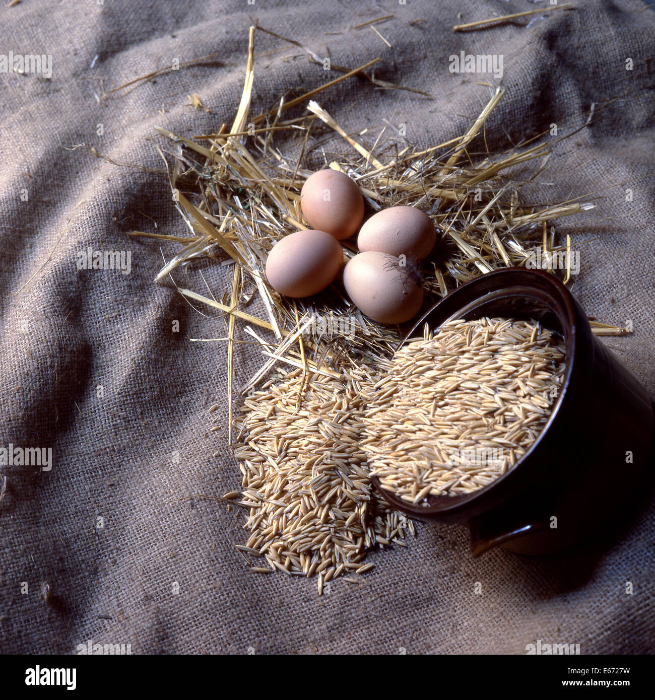 New laid eggs, straw and oats on hessian sacking - Stock Image