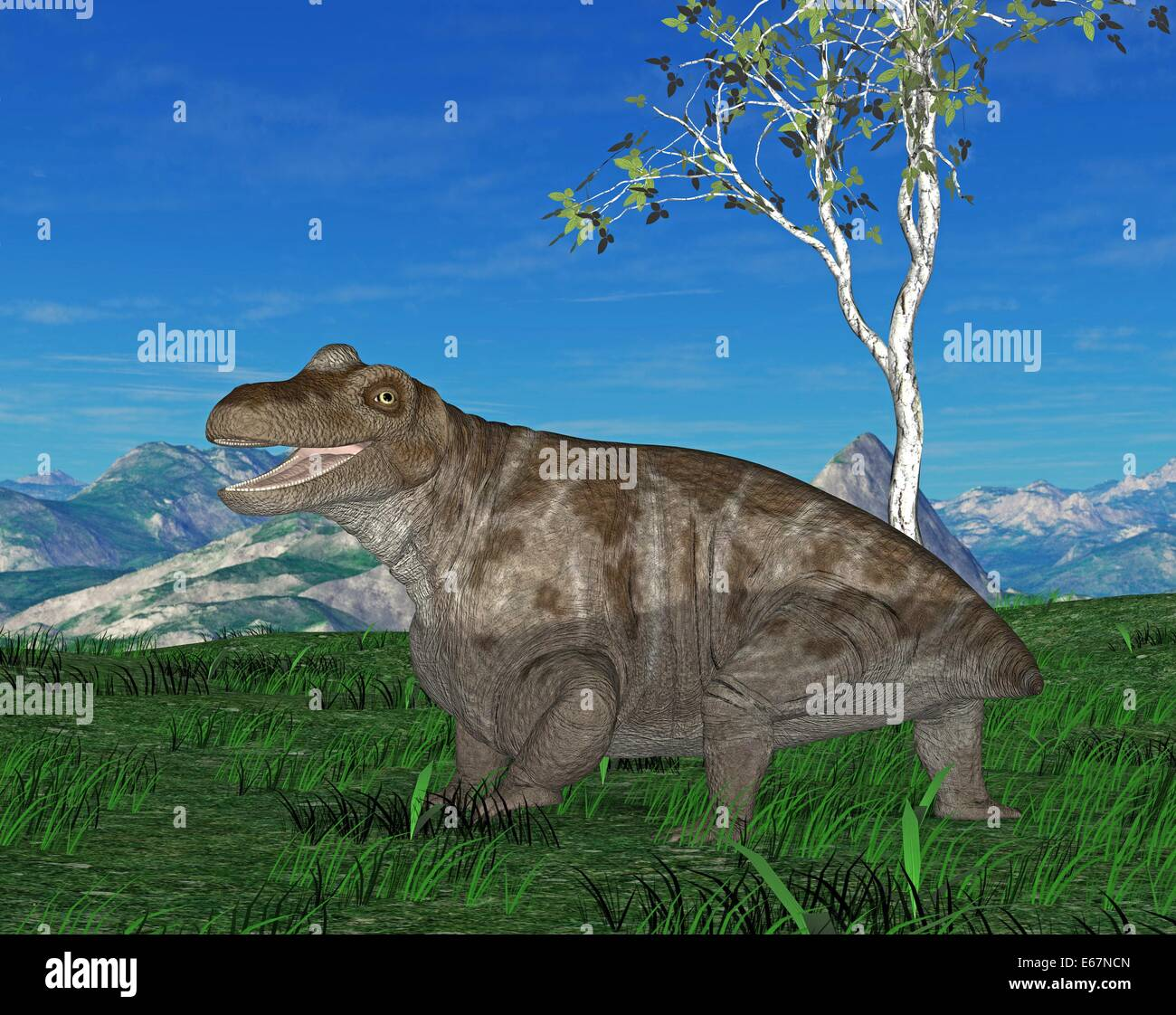 Dinosaurier Keratocephalus / dinosaur Keratocephalus - Stock Image