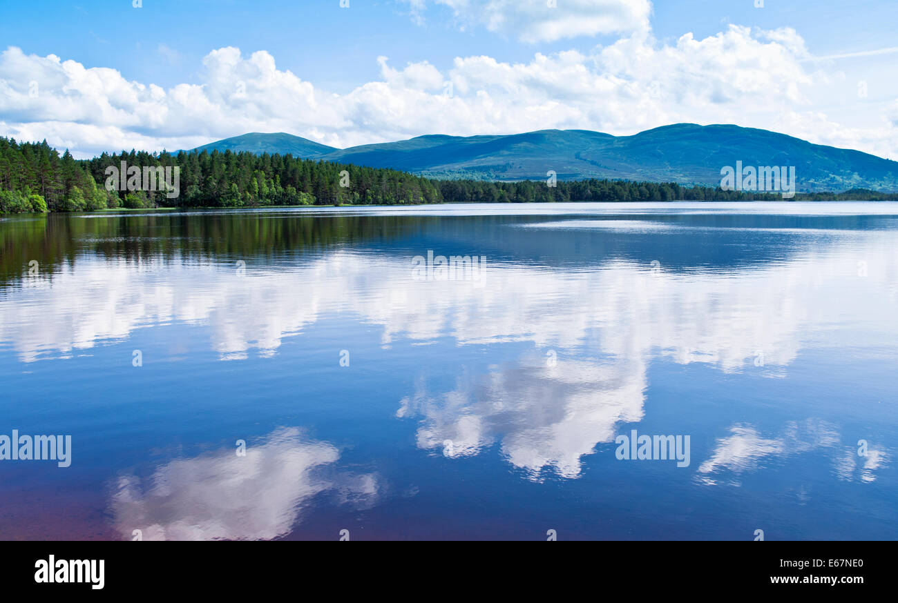 Forest, hills and sky reflected in Loch Garten, RSPB Abernethy Forest National Nature Reserve, Cairngorms, Speyside, - Stock Image